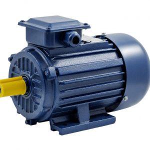 Асинхронный электродвигатель АИМ 112 МВ6 1ExdIIВТ4 (взрывозащита IM 1081)