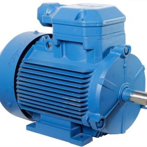 Асинхронный электродвигатель АИМ 100 L2 1ExdIIВТ4 (взрывозащита IM 1081)