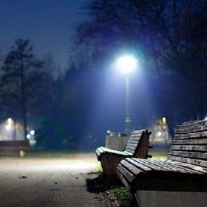 Светильник парковый ДТУ 04-40-50